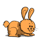 lapin/original/lapin-orange.png